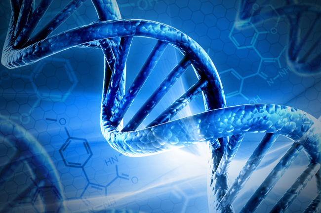 Blue DNA strand while molecules highlighted